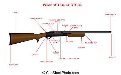 Labeled Shotgun Diagram - Labeled illustration of a pump...