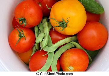 Harvested Vegetables in White Bucket