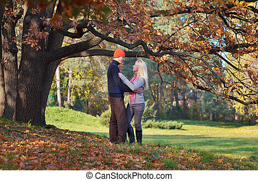 Happy couple in the park - Happy couple relaxing in autumn...
