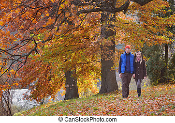Couple in autumn park - Couple walking in the autumn park on...