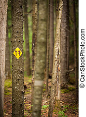 washroom sign in forest - mens and womens restroom sign in a...