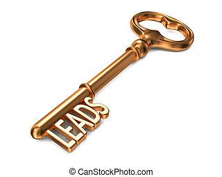 Leads - Golden Key. - Leads - Golden Key on White...