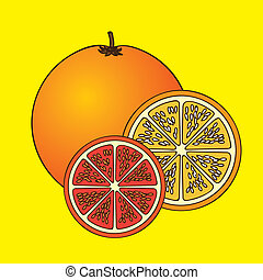 citrus fruit over yellow background vector illustration