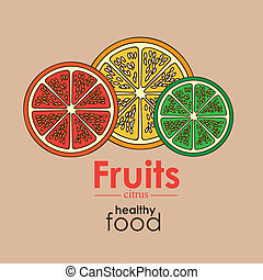 citrus fruit over pink background vector illustration