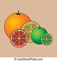 citrus fruit over pink background vector illustration
