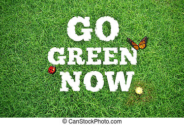 Go Green Now