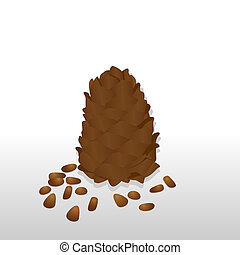 Pine cones and pine nuts. The illustration on a white...