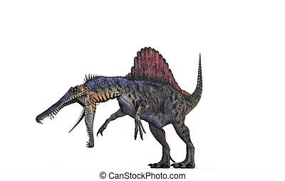 spinosaurus isolated on white background