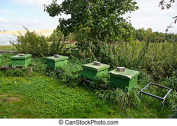 Organic Honey bee hives - Organic Ecological Honey bee hives...