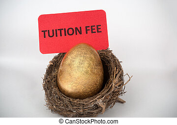 Tuition fee concept with golden egg in the bird nest