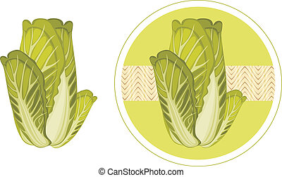 Green cabbage isolated on the white and circle sticker for...