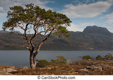 Slioch and Loch Maree - Looking over Loch Maree to Slioch