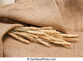 wheat on a burlap