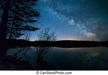 Trees With Milky Way - Milky way with trees