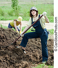 farmers works with manure - Female farmers works with manure...