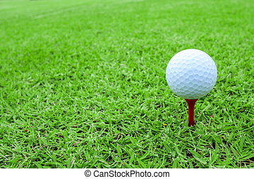 golf ball on a tee in green grass course - golf ball on a...