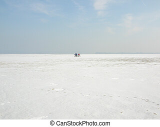 Cold Cycling - People Cycling on the Frozen Bodensee,...