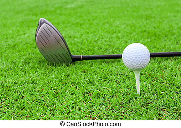 golf ball on a tee and driver in green grass course - golf...