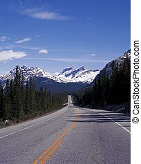 Highway 93, Banff National Park. - Highway 93, The Icefields...
