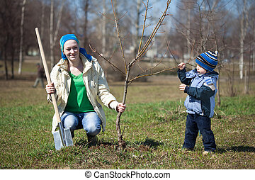 woman with her son planting tree - young woman with her son...