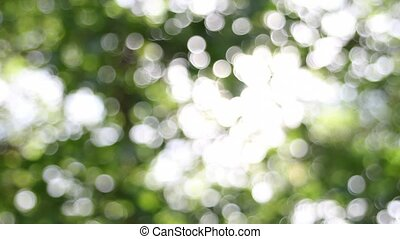 Twinkling Blurred Bokeh Time Lapse - Twinkling Blurred Out...