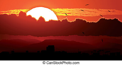 Flying birds in sunset in clouds. - Vector illustration of...