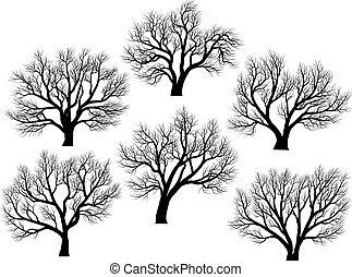 Silhouettes: trees without leaves. - Set of vector...