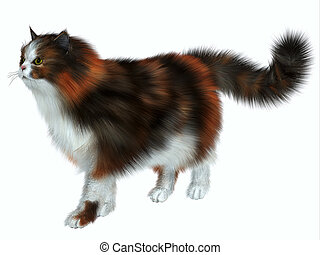 Calico Cat - The Calico domestic cat has a coat color of...