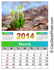 2014 Calendar. March. The first snowdrops.