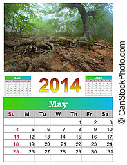 2014 Calendar. May. Tree with huge roots.