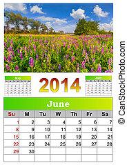 2014 Calendar. June. Field of blooming flowers.