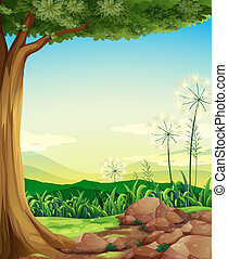 A forest with rocks - Illustration of a forest with rocks