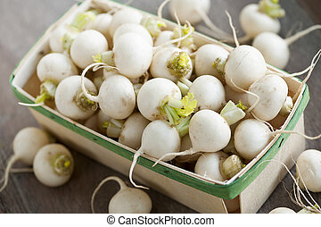 Basket of small turnips - Many small white freshly picked...