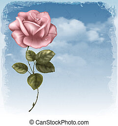 Greening cards - Vintage greeting cards with rose and sky.