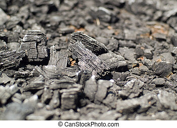 Burnt Wood, looking more like charcoal at this point Shallow...