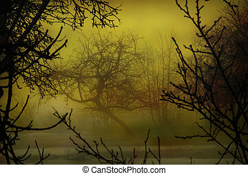 Garden mist - Computer manipulation of images of nature and...
