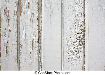 texture of old wooden panel - texture of the old wooden...