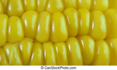 Corn On The Cob Closeup Dolly  Shot