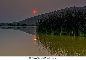 Lake reeds and a smokey sunrse in a natural desert lake