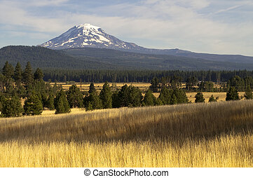 Golden Grassland Countryside Mount Adams Mountain Farmland...
