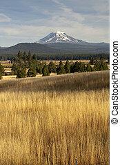 Golden Grassland Countryside Mount Adams Mountain Farmland...