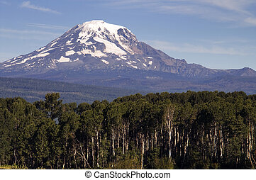 Forest Landscape Adjacent Ranch Countryside Mount Adams...