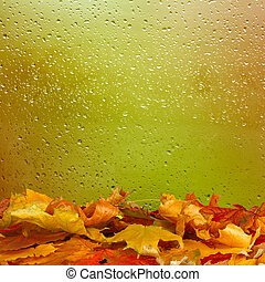 Dried autumn leaves lying on the background of the rainy...