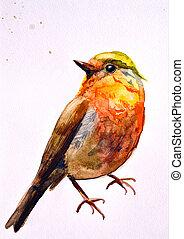 watercolor drawing of cute bird