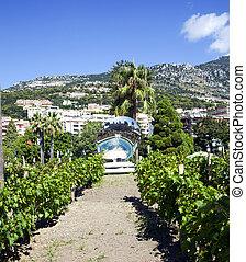 Luxury elite apartments in Monaco