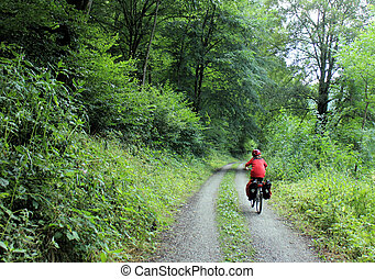 Bicycle tour - Young boy on a bicycle tour through a green...