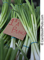Bunches of Green Onions For Sale at the Farmers Market for a...