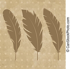 Set vintage feathers on grunge background