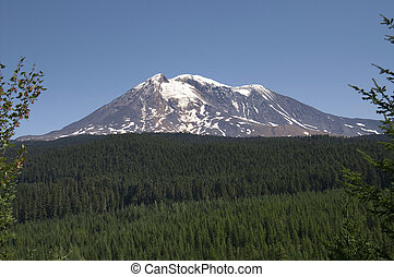 Mount Adams Cascade Range Gifford Pinchot National Forest...