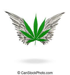 Marijuana, feuille, élevé